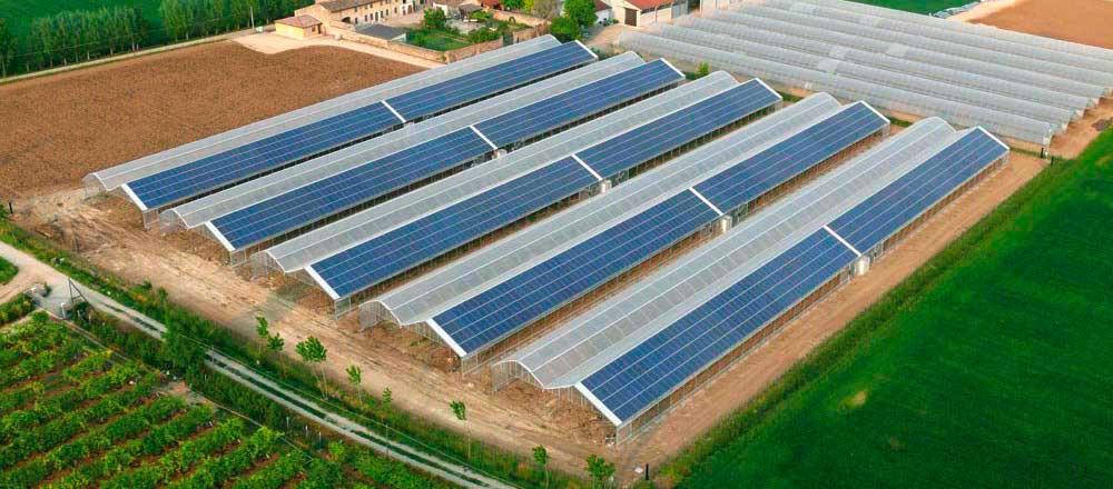 serre-fotovoltaiche-bi-mu-00