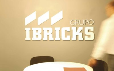 Ibricks