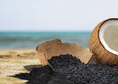 Carbón Activo de Cáscara de Coco