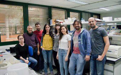 Genética Molecular de la Universidad Pablo de Olavide