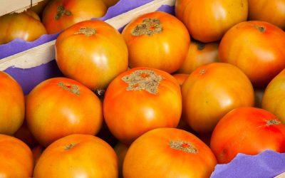 Frutas Jose Moratinos