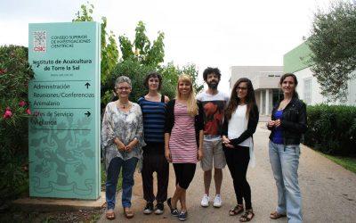 Grupo de Patologia de Peces (CSIC)