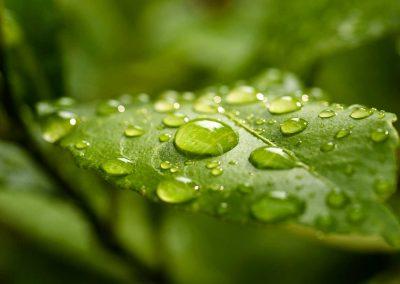 ISO-14001---Environmental-Management