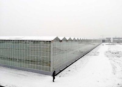 Proyecto-invernadero-VENLO-CHINA-NIEVE