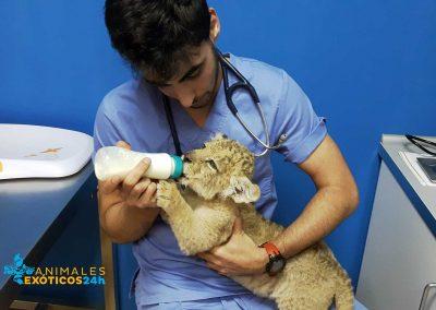 servicio-de-neonatología